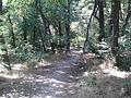 Park Lauta 7.jpg