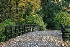 Park Sołacki w Poznaniu , most drewniany nad stawem - 7606