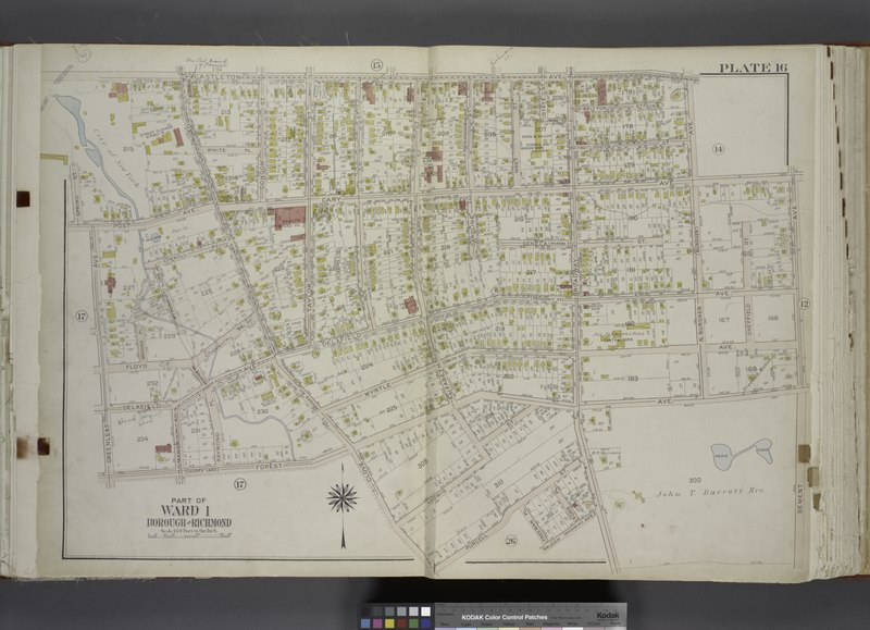 File:Part of Ward 1. (Map bound by Castleton Ave, N. Burgher Ave (Burgher), Cary Ave, Bement Ave, John T. Barrett Hrs., Broadway, Raleigh (Division Ave) Ave, Freeman PL, Purcell St, Clove Road NYPL1646236.tiff