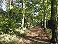 Path in Eltham Park (north) - geograph.org.uk - 1554559.jpg
