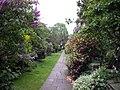 Pathway in Chelsea Park Gardens, Chelsea - geograph.org.uk - 1838115.jpg