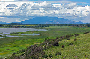 Peaks and monsoon clouds from Mormon Lake.jpg
