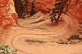 Peek-A-Boo trail, Bryce Canyon.jpg
