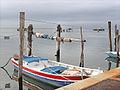 Pellestrina (Lagune de Venise) (8087740063).jpg