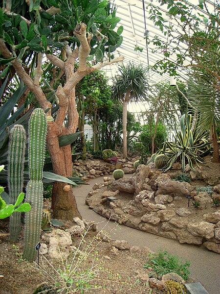 [Image: 450px-Phipps_Conservatory_%26_Botanical_Gardens_208.jpg]