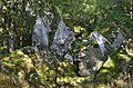 Phosphatières du Cloup d'Aural - 20140925 - Dents de dragon 1.jpg