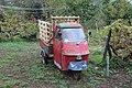 Piaggio Ape in Ligurien (4).jpg