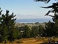 Pichilemu, Chile - panoramio.jpg