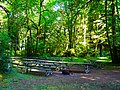 Picnic tables waiting for people at Cascadia State Park day use area.jpg