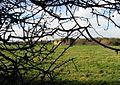 Pill box viewed through the hedge on Hollybush Lane - geograph.org.uk - 630250.jpg