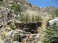 Pima Canyon Trail Lower Dam.JPG