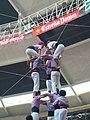 Plaça de Braus de Tarragona - Concurs 2012 P1410224.jpg