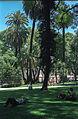 Plaza San Martin(js).jpg