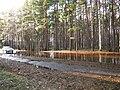 Pludi druvciema 2011 - panoramio (43).jpg