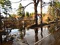 Pludi druvciema 2011 - panoramio (68).jpg