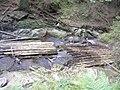Pohořský potok, výdřeva (01).jpg