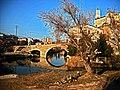 Pont vell de Gironella des de darrera la Llar de Gironella02.jpg
