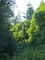 Powerline in trees beside Bream - June 2012 - panoramio.jpg