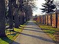 Protestant cemetery.jpg