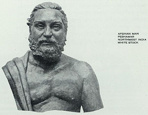 The Races of Mankind - Afghan man of Irano-Afghan Caucasoid type, from The Races of Mankind by Malvina Hoffman (1929).