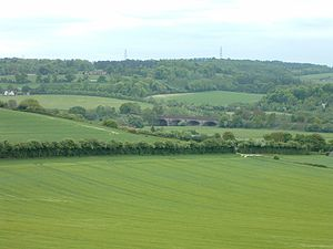 Berkshire Downs - The Downs near Goring-on-Thames