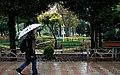 Rainy day of Tehran - 29 October 2011 02.jpg