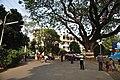 Ramakrishna Mission Ashrama Campus - Narendrapur - Kolkata 2012-01-21 8591.JPG
