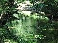Reflection Crabtree Creek Company Mill Trail Umstead NC SP 0074 (3583818642).jpg