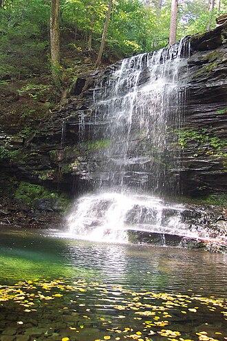 Ricketts Glen State Park - Image: Rglenn 05