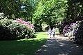 Rhododendronpark Bremen 20090513 230.JPG