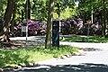 Rhododendronpark Bremen 20090513 275.JPG