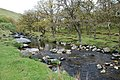 River Erme - geograph.org.uk - 1299764.jpg