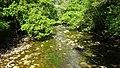 River Lugar, Mote Hill, Cumnock, East Ayrshire - view north.jpg