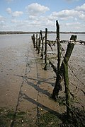 River Orwell fence - geograph.org.uk - 766180.jpg