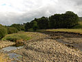 River South Tyne - geograph.org.uk - 213087.jpg