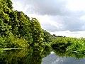 River Waveney - geograph.org.uk - 221981.jpg