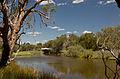 River gnangarra-205.jpg