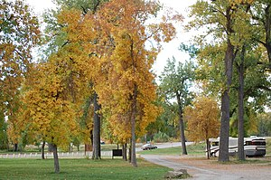 Laurel, Montana - Riverfront Park along the Nez Perce National Historic Trail.