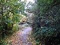 Riverside Park - geograph.org.uk - 69510.jpg