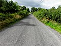 Road at Gowlagh South (geograph 3610794).jpg