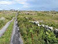 Road to the village - geograph.org.uk - 1449463