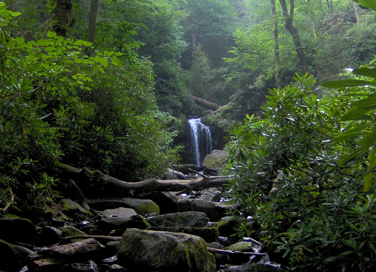 roaring fork great smoky mountains wikipedia