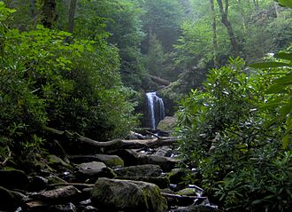 Roaring Fork (Great Smoky Mountains) - Roaring Fork, with Grotto Falls in the distance