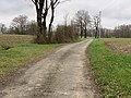 Route Teppes St Jean Veyle 4.jpg