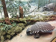 Photograph of a dinosaur diorama
