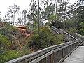 SAM 1547 (1)county park at lillian alabama (8638118965).jpg