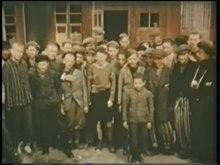 File: SFP 186 - Buchenwald.webm