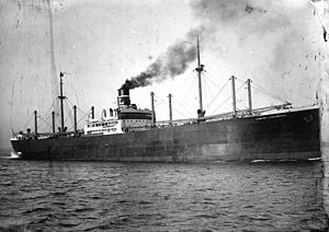 SS Edward Luckenbach around the time of her completion in 1916.
