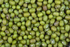 Mung bean - Mung beans