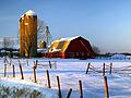 Saint-Alexandre ferme et ses silos.jpg
